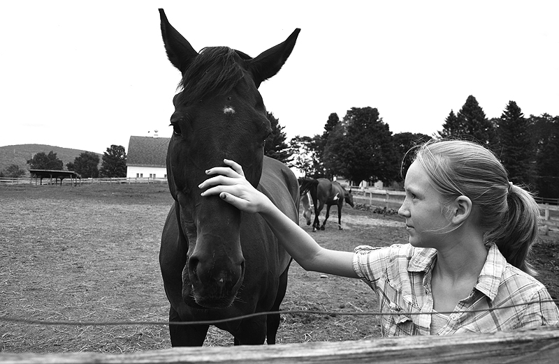 The Girl Who Loves Horses